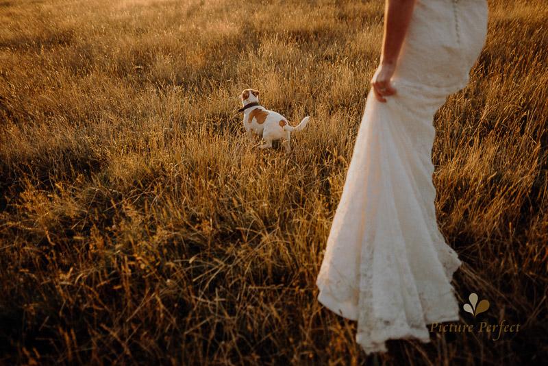 Manawatu farm rustic wedding of Natalie and Hamish 6625