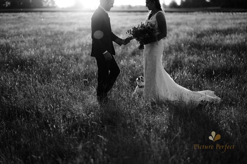 Manawatu farm rustic wedding of Natalie and Hamish 6708