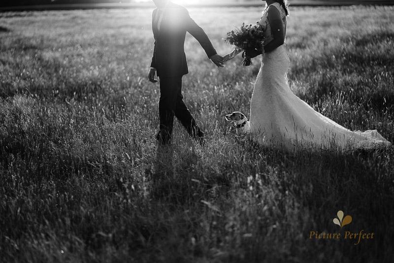 Manawatu farm rustic wedding of Natalie and Hamish 6713