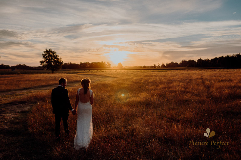 Golden hour wedding photography of the bride and groom during a beautiful manawatu summer sunset