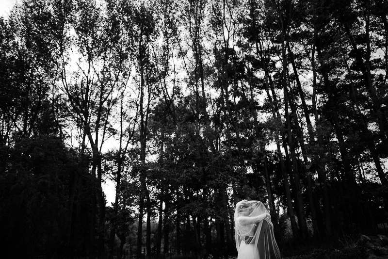 bride and groom under the wedding veil in black and white in front of a forest